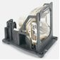 INFOCUS RPLMNT LAMP FOR DP8000HB LP790HB