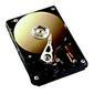"FUJITSU HD/250GB SATA300 7200rpm hot plug 3.5"""
