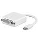 WENTRONIC adapter mini displayport Mini displayport -> DVI    Apple iBook