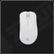 ZOWIE EC1 EVO - Pro Gaming Mouse White