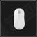 ZOWIE AM-FG White Mouse