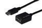 ASSMANN Electronic Displayport / VGA adapter 0,15m Displayport han:VGA hun - sorte